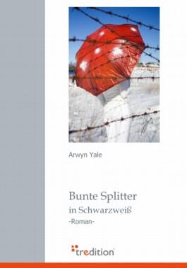 Bunte Splitter in Schwarzweiß
