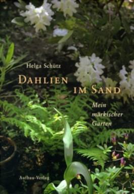 Dahlien im Sand