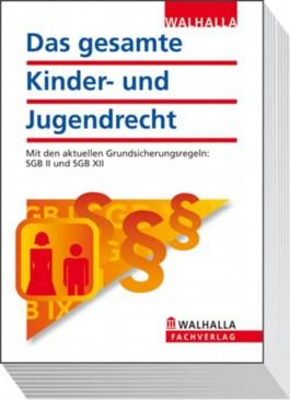Das gesamte Kinder- und Jugendrecht Ausgabe 2012