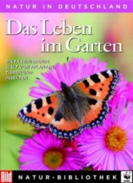 Das Leben im Garten