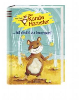 Der Karatehmaster ist nicht zu bremsen