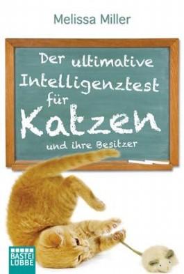 Der ultimative Intelligenztest für Katzen
