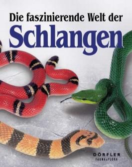 Die faszinierende Welt der Schlangen
