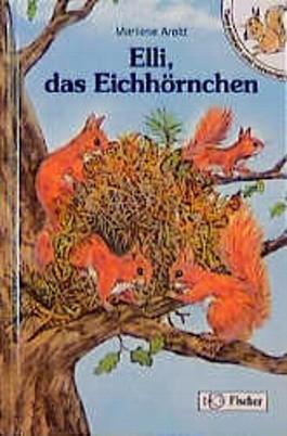 Elli, das Eichhörnchen. Großdruck