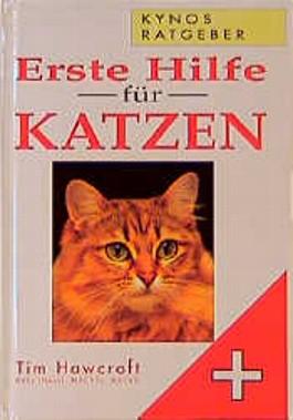 Erste Hilfe für Katzen