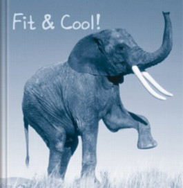 Fit & Cool!