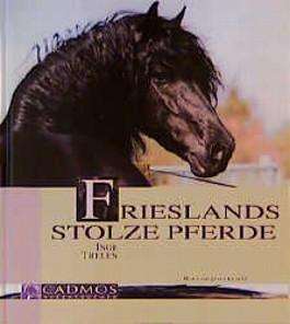Frieslands stolze Pferde