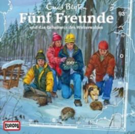 Fünf Freunde und das Geheimnis des Winterwaldes, 1 Audio-CD