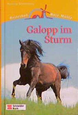 Galopp im Sturm