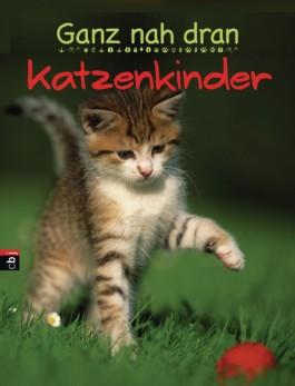 Ganz nah dran - Katzenkinder