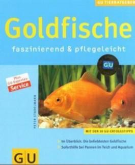 Goldfische faszinierend & pflegeleicht