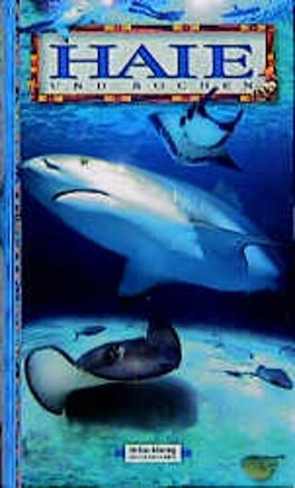 Haie und Rochen