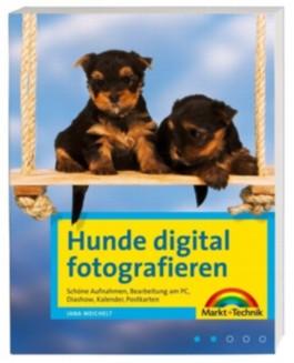 Hunde digital fotografieren