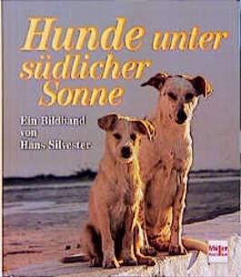 Hunde unter südlicher Sonne