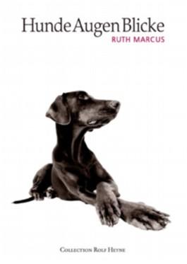 HundeAugenBlicke