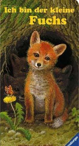 Ich bin der kleine Fuchs