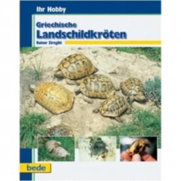 Ihr Hobby Griechische Landschildkröten