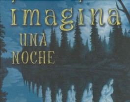 Imagina Una Noche/ Imagine a Night