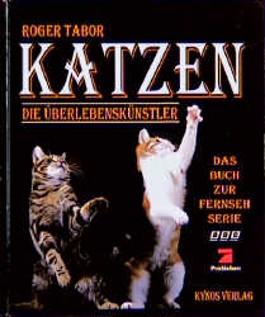 Katzen, die Überlebenskünstler