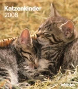 Katzenkinder 2008