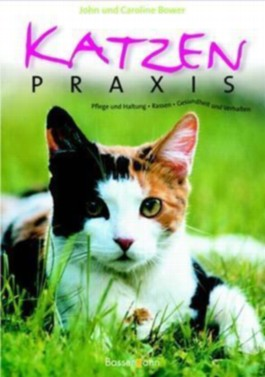 Katzenpraxis