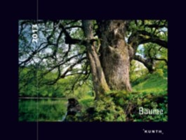 KUNTH Kalender Bäume 2012