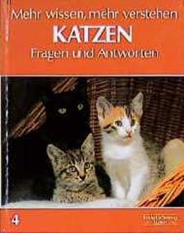 Mehr wissen, mehr verstehen IV. Katzen