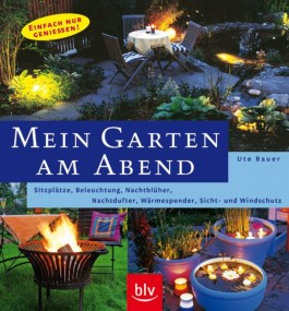 Mein Garten am Abend