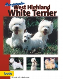 Mein gesunder West Highland White Terrier