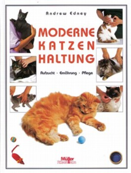 Moderne Katzenhaltung