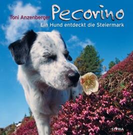 Pecorino, Ein Hund entdeckt die Steiermark