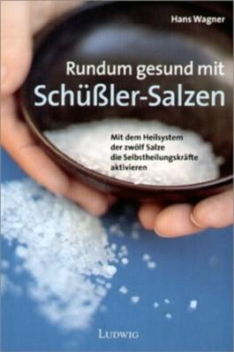 Rundum gesund mit Schüssler-Salzen. Mit dem Heilsystem der zwölf Salze die Selbstheilungskräfte aktivieren