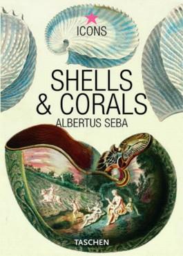 Seba, Shells & Corals
