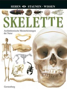 Skelette