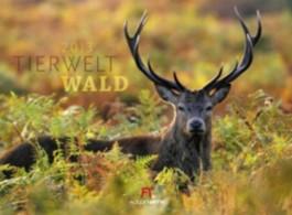 Tierwelt Wald 2012