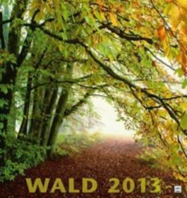 Wald 2012