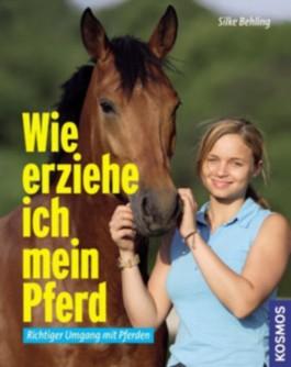 Wie erziehe ich mein Pferd