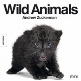 Wild Animals mini