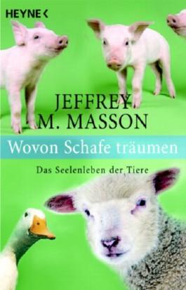 Wovon Schafe träumen