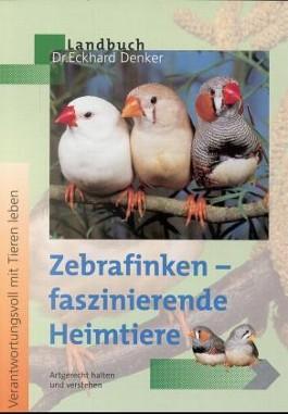 Zebrafinken - faszinierende Heimtiere