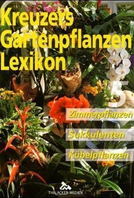 Zimmerpflanzen, Sukkulenten, Kübelpflanzen