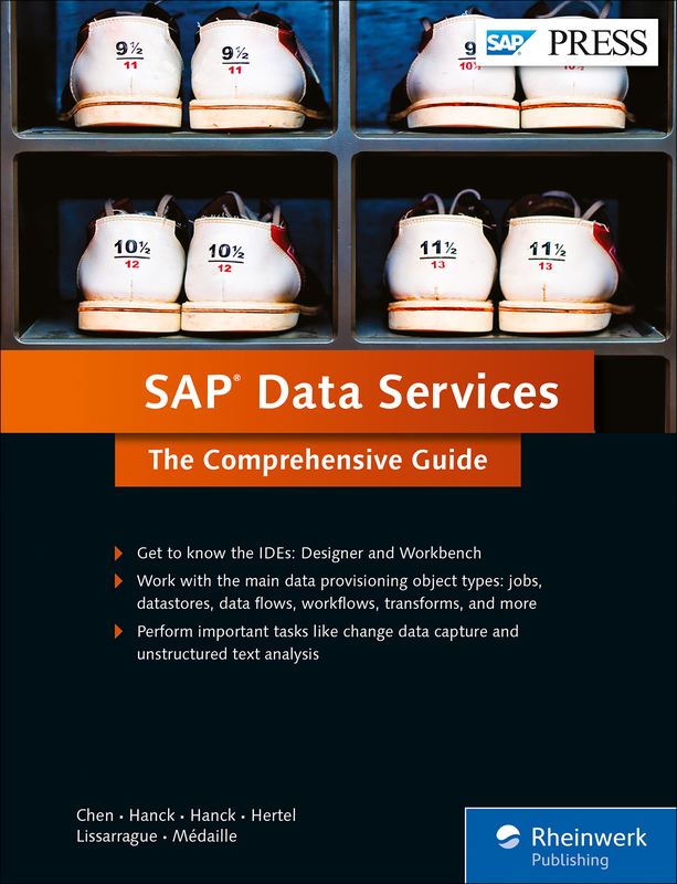 SAP Data Services - The Comprehensive Guide