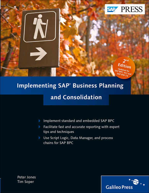 Implementing sap business planning and consolidation pdf