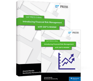 Cover von Introducing Financial Risk Management with SAP S/4HANA