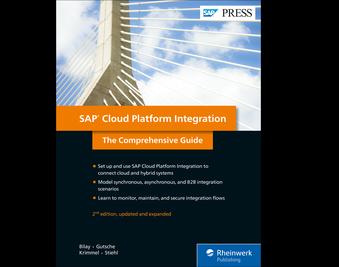 Cover von SAP Code Inspector