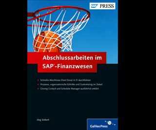 Cover von Abschlussarbeiten im SAP-Finanzwesen