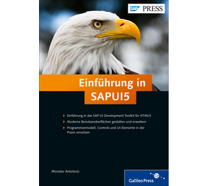 Cover von Einführung in SAPUI5
