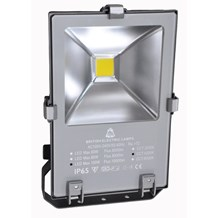 100W Skyline Pro Marine Grade Floodlight - Photocell, 4200K