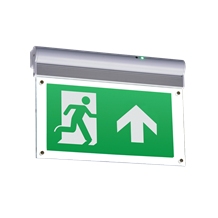 EMEXIT 230V IP20 Wall or Ceiling Mounted LED Emergency Exit Sign