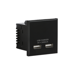Dual USB charger (2A) Module 50 x 50mm - Black